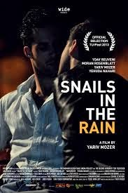 Snails in the rain, 2013