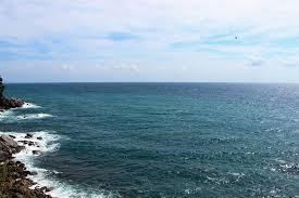 Peluang Usaha Budidaya di Daerah Pantai