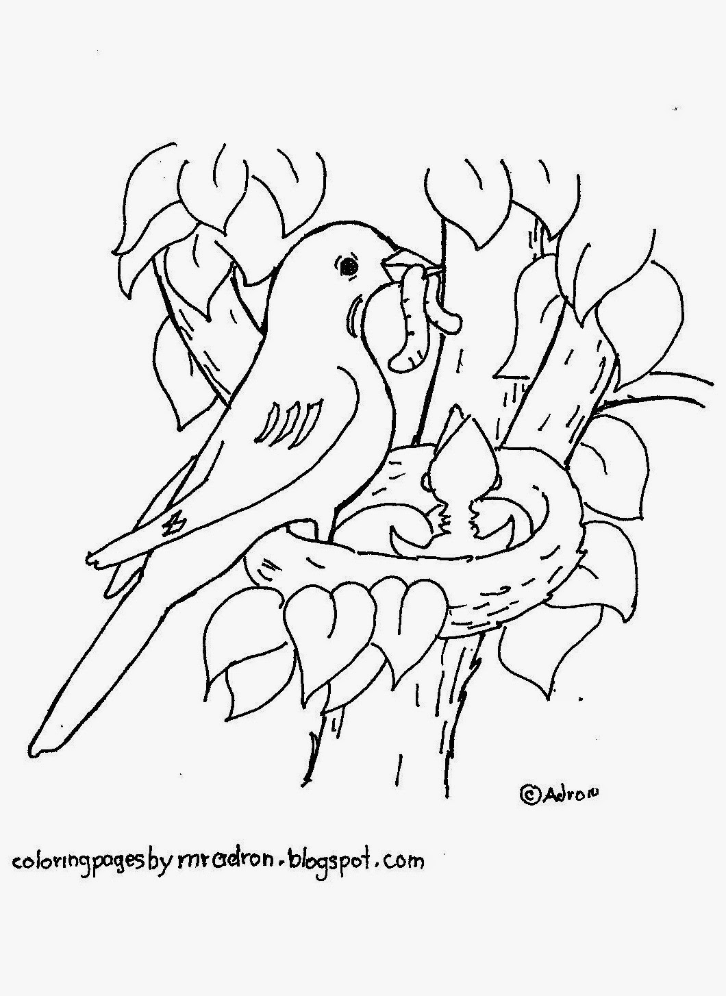 A picture to print and color of a bird.