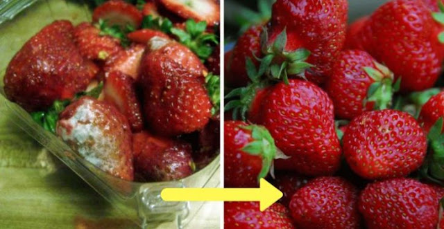 Farmers Reveal The Trick That Keeps Strawberries Very Long