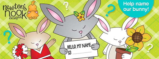 Name the bunny | Newton's Nook Designs #newtonsnook