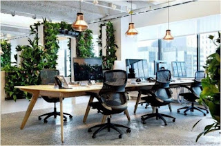 Какие преимущества дает офис в стиле Biophilic?