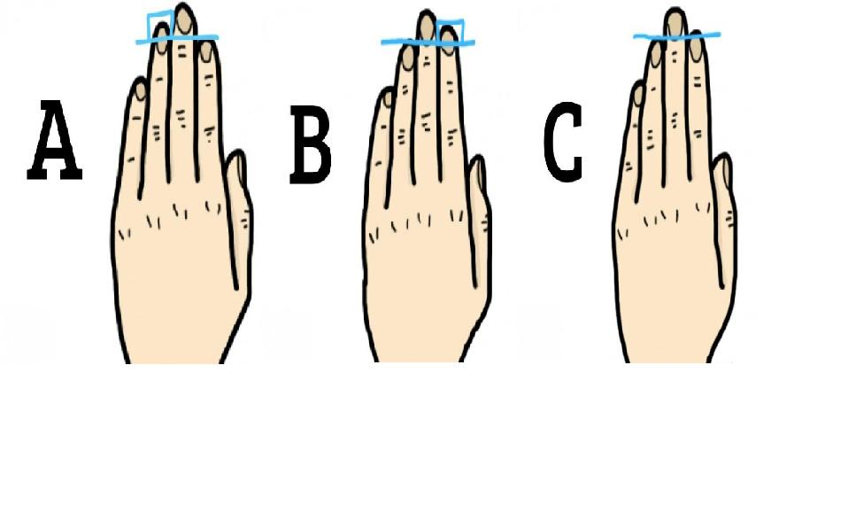 The Length of Fingers Reveals your Personality Traits