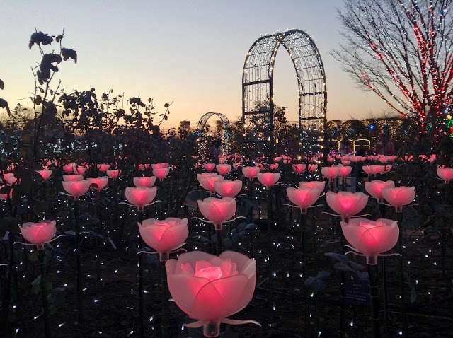 Ashikaga Flower Park illuminations