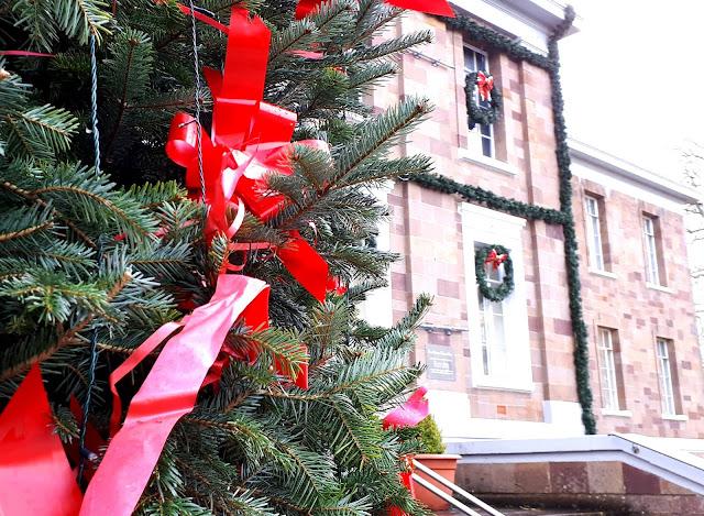 Punainen rusetti, rusettikoriste, joulukuusi