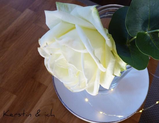 Rose Eukalyptus Einnmachglas Deko