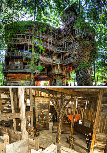 beautiful treehouses around the world