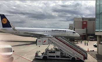 ΑΠΙΣΤΕΥΤΟ: Δείτε τι έκανε ένα πουλί σε αεροπλάνο της Lufthansa! (pics)