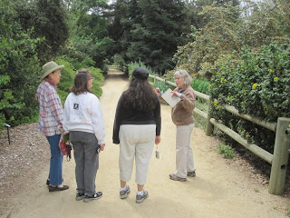 Guided tour at Rancho Santa Ana Botanic Garden