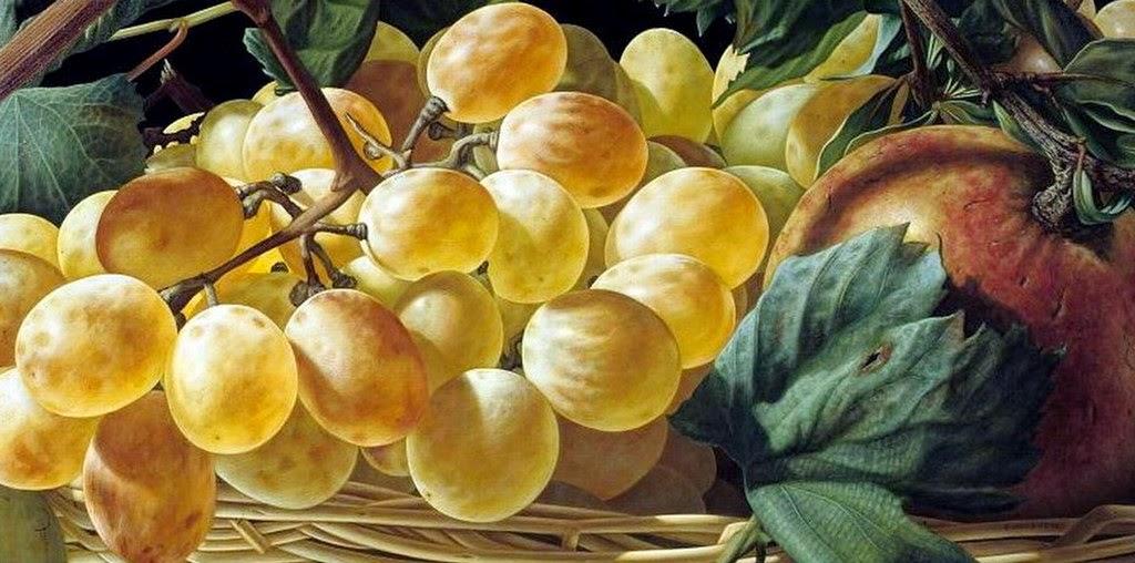 Im genes arte pinturas fotos de uvas pintadas al leo - Pinturas bodegones modernos ...