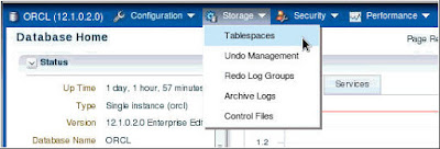 Managing Database Storage Structure