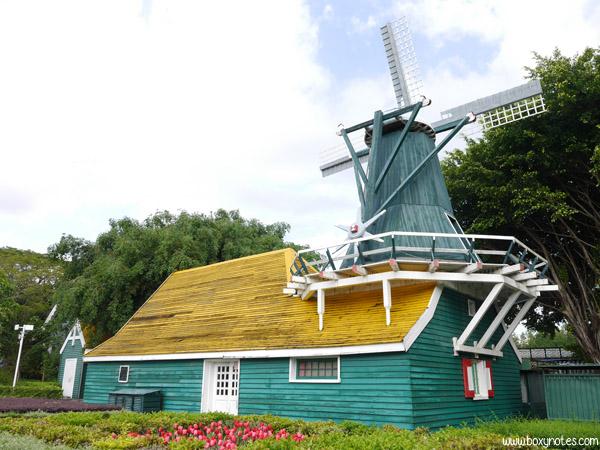 windmills-belanda