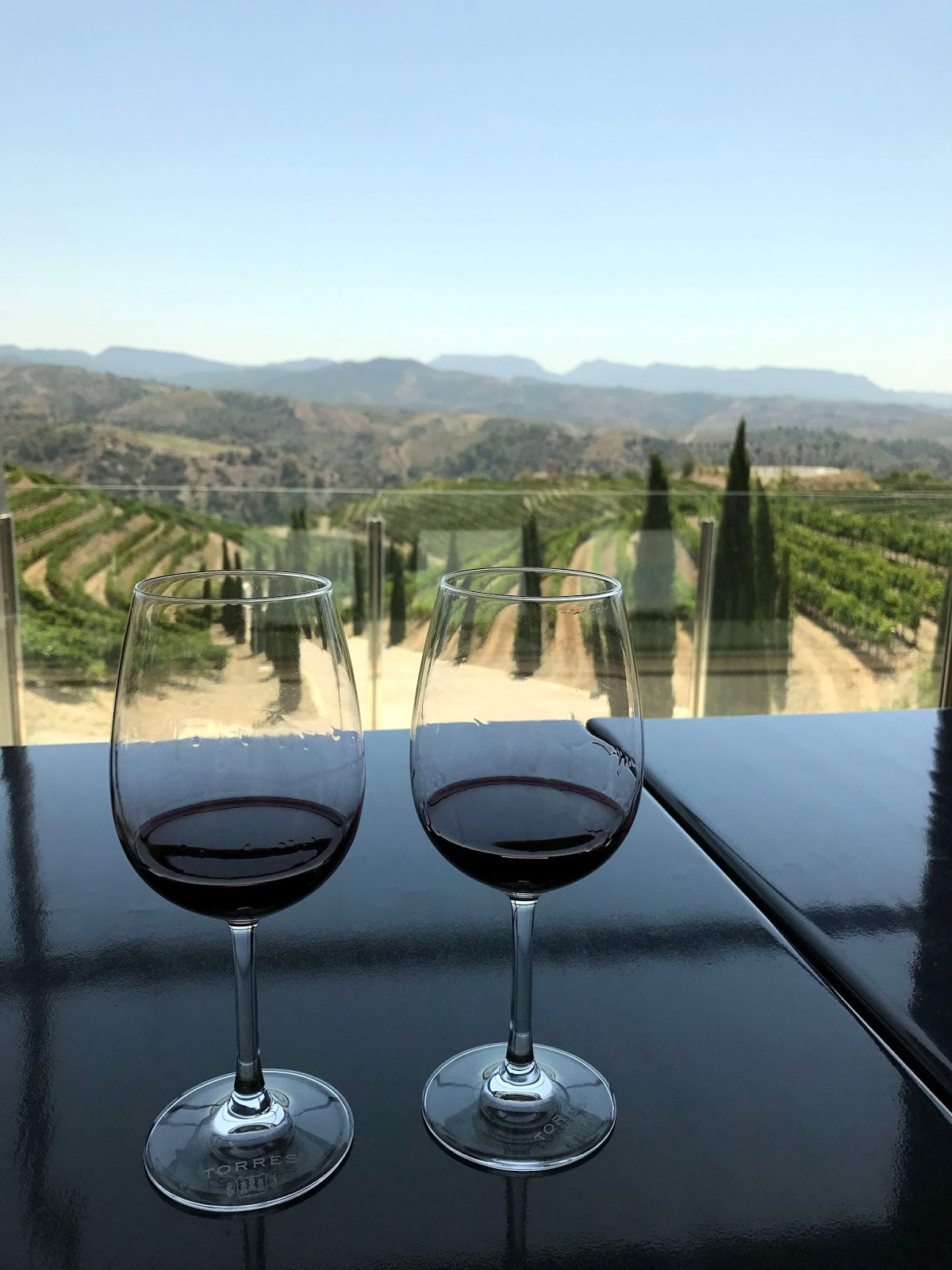 Stitch & Bear - Torres Priorat - Tasting overlooking the vineyards