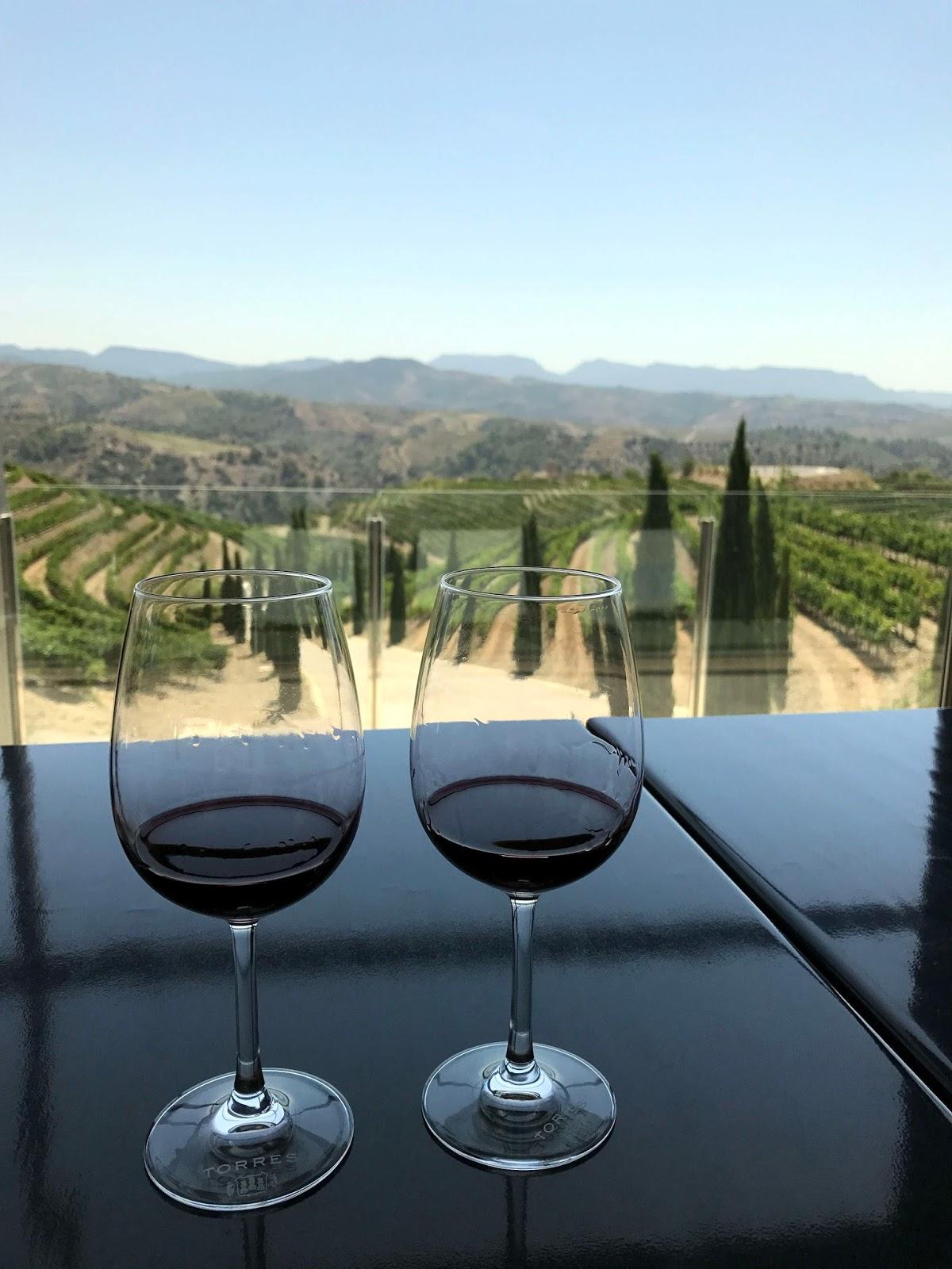 Stitch & Bear - Torres Priorat - Tasting overlooking the vineyards