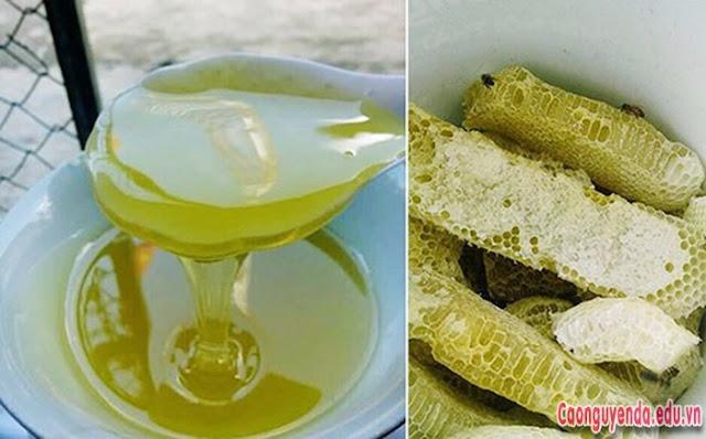 Mật ong bạc hà Hà Giang