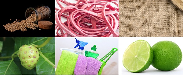 perper, rubber band, mesh cloth, morinda citrifolia,lime