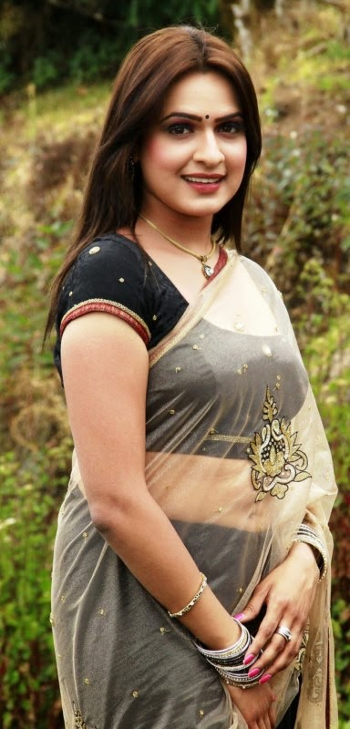 Actress Aditi Agarwal Saree Photos