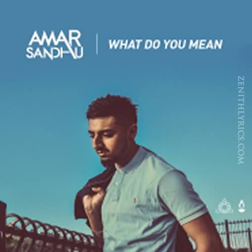What Do You Mean (Cover) - Amar Sandhu