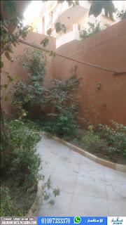 بيزمنت للايجار الحى الثانى التجمع الخامس 350 متر يصلح مخزن او مقر ادارى من المالك-عقار سورس