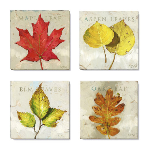 decorate for Fall, elm leaf, oak leaf, maple, leaf, aspen leaf