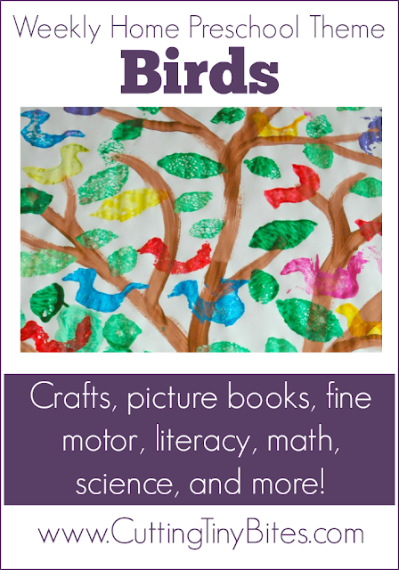 Bird Theme Weekly Home Preschool. Math, crafts, picture books, literacy, fine motor, field trip, and more! EASY week of homeschool Pre-K activities.