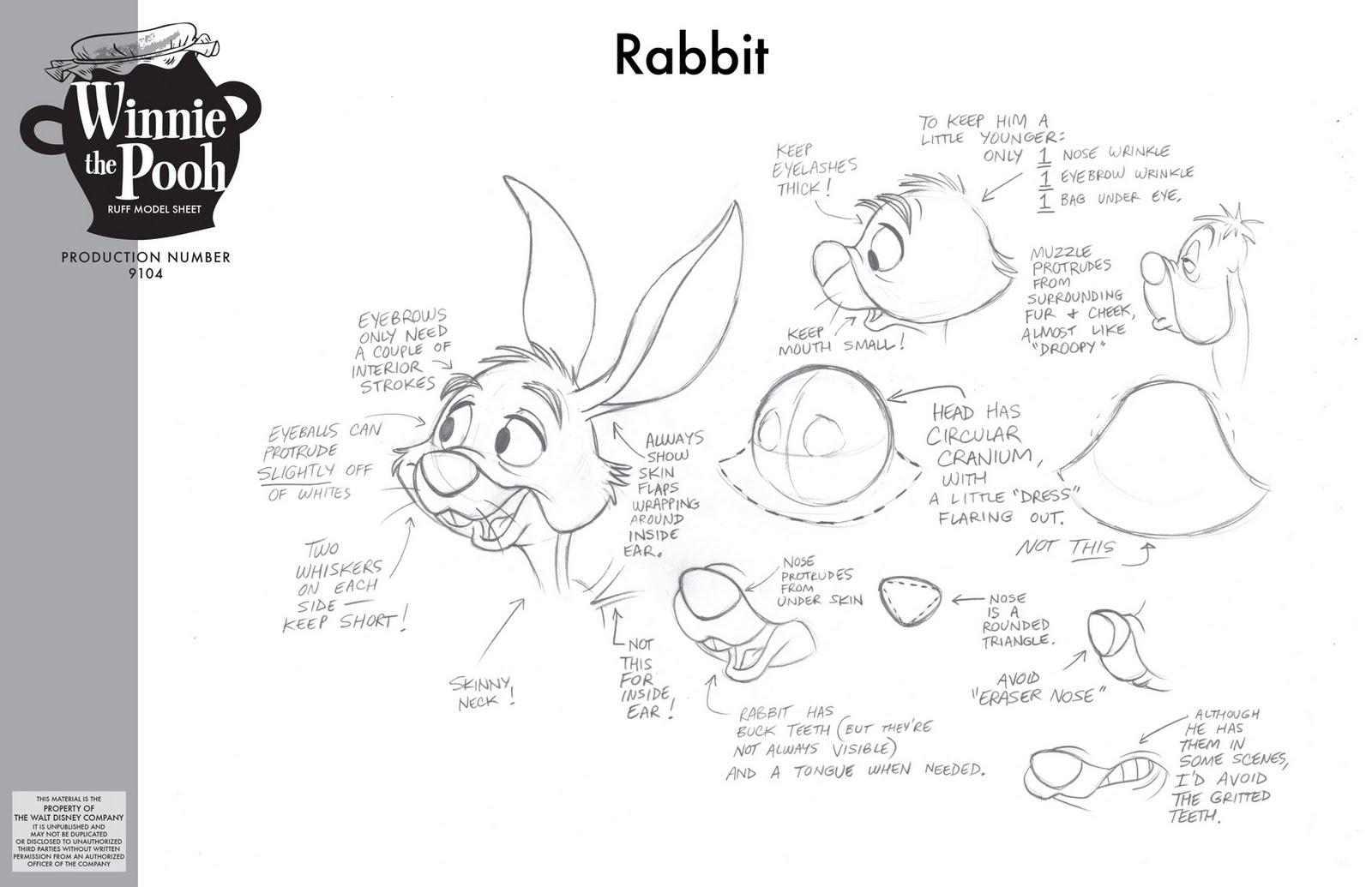 Rabbit Anatomy Worksheet