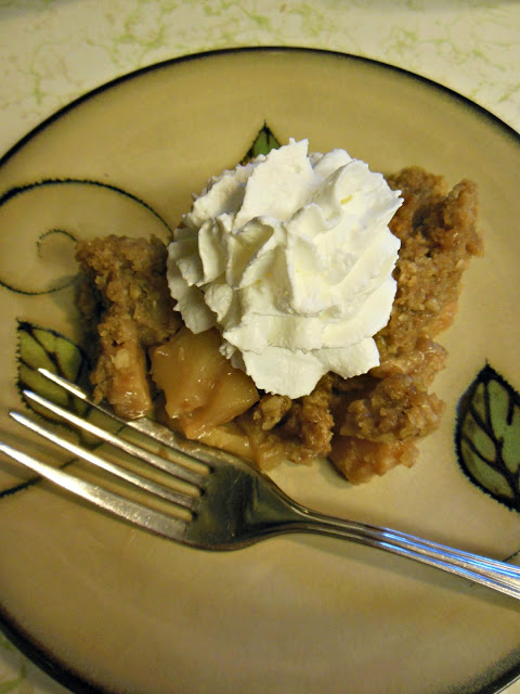 Easy and Delicious Apple Crisp, a slow cooker recipe.s