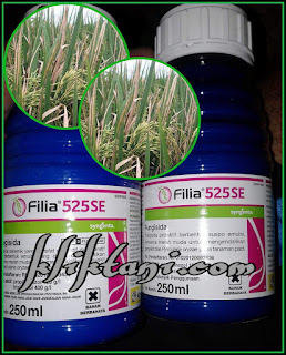 fungisida filia