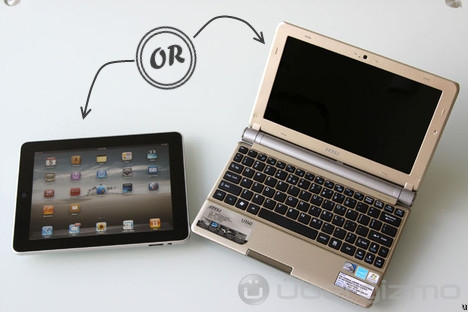 ipad-or-netbook