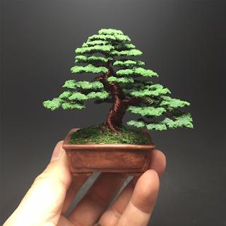 شجرة بونساي 1