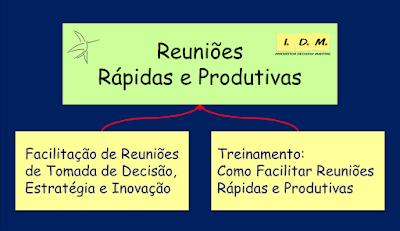 Facilitação de Reuniões Rápidas e Produtivas - Tomada de Decisão, Planejamento, Estratégico, Inovação, Solução de Problemas - Metodologia IDM - Treinamento, Liderança