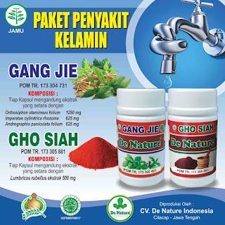 Obat tradisional gang jie dan gho siah untuk mengobati penyakit kelamin sipilis