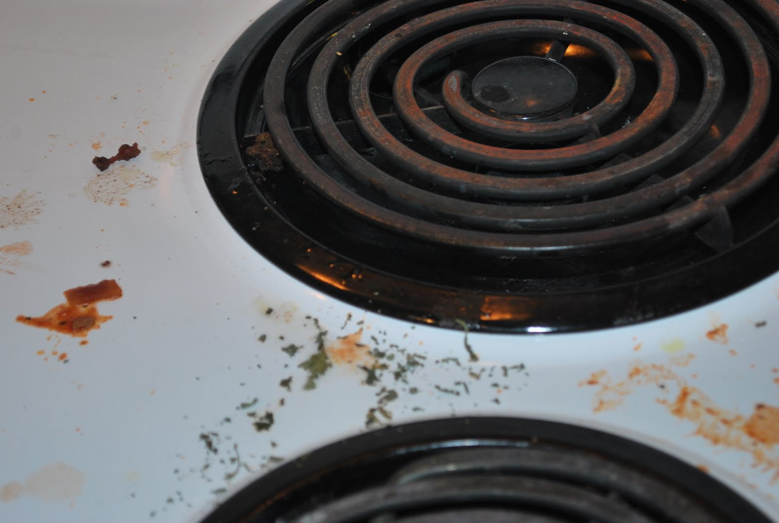 Off The Cuff Cooking Chemical Free Range Oven Cleaning A