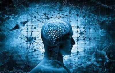 Los puntos más importantes para comprender el cerebro de un adicto