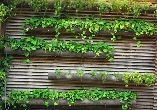 Membuat Vertical Garden