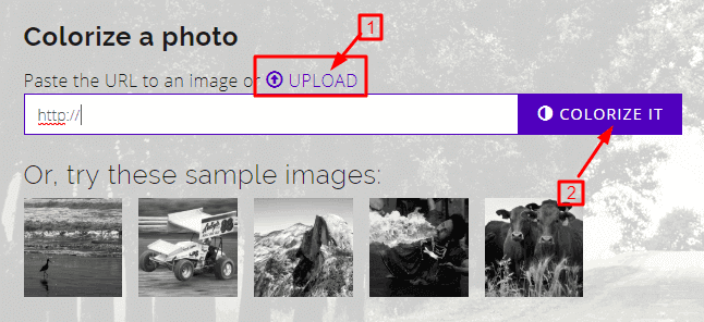 convert black and white image into colour image