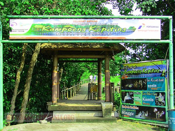 Tempat Wisata Ekowisata Mangrove Tuban Bali