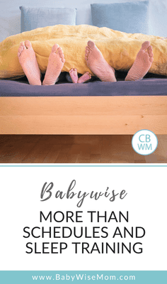Babywise: So Much More Than Schedules and Sleep Training!. How to work to make Babywise work for you and your family situation.