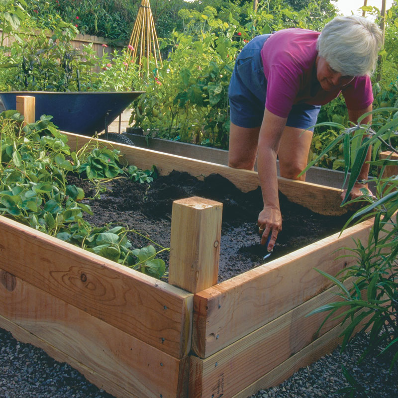 Rise Above Your Limits: Stand Up Gardening