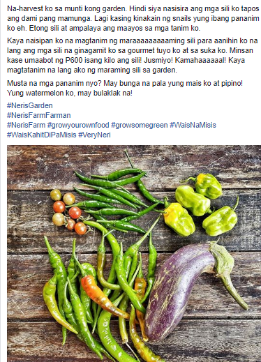 """THE """"WAIS"""" WIFE OF CHITO MIRANDA - Neri Naig Breaks The Traditional 'STAY AT HOME MOM'"""