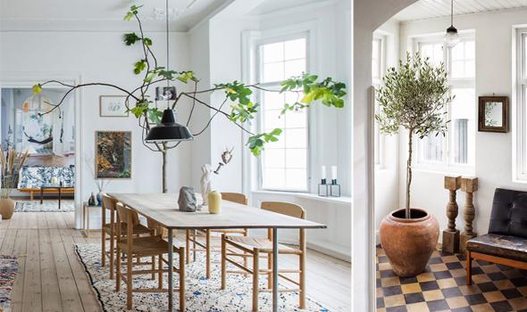 consigli home, esperti, garden design