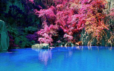 Pink Fall Desktop Wallpaper H 236 Nh Nền Đẹp Tuyển Tập Bộ ảnh Nền M 249 A Thu đẹp Nhất