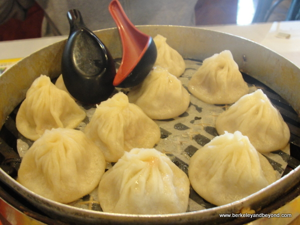 Xiao Long Bao/Shanghai steamed-pork dumplings at Shanghai Dumpling Shop in Millbrae, California