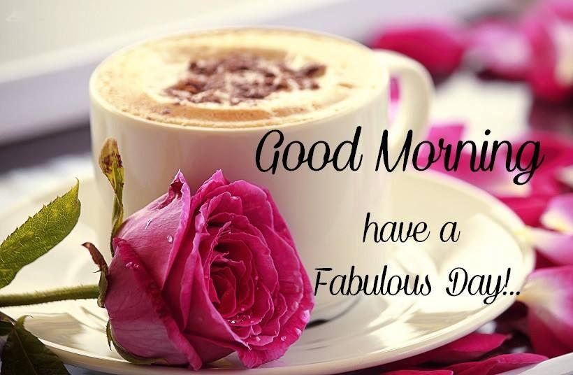 Good Morning Flower Image Wallpaper Free