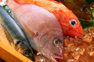 ciri-ikan-segar-berformalin.jpg