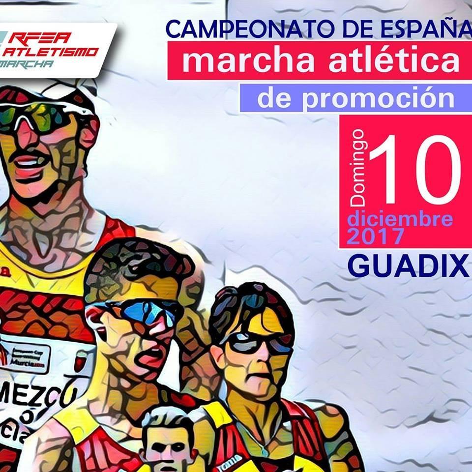 El diario de destino guadix el vii campeonato de espa a for Juzgado de guadix