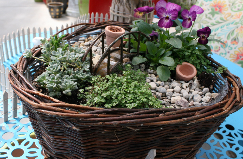 8 Lovelies Diy Fun Making Fairy Gardens
