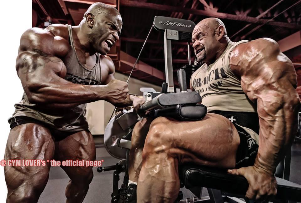 Funny Bodybuilding Wallpapers   Bodybuilding Wallpapers ...
