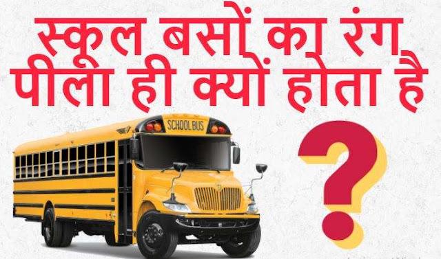 स्कूल बसों का रंग पीला ही क्यों होता है - Why is the Color of School Buses Yellow
