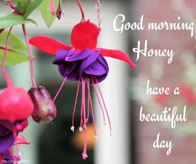 have a beautiful day honey